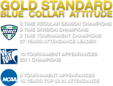 Gold Standard - Blue Collar Attitude